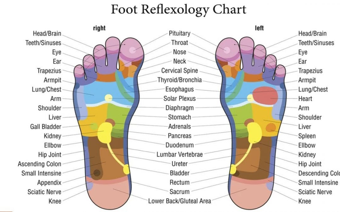Reflexology: an introduction
