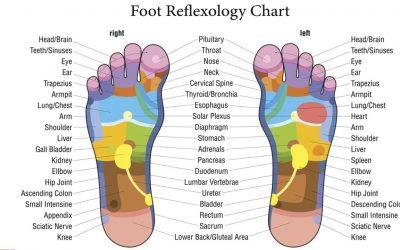 Reflexology: an introduction