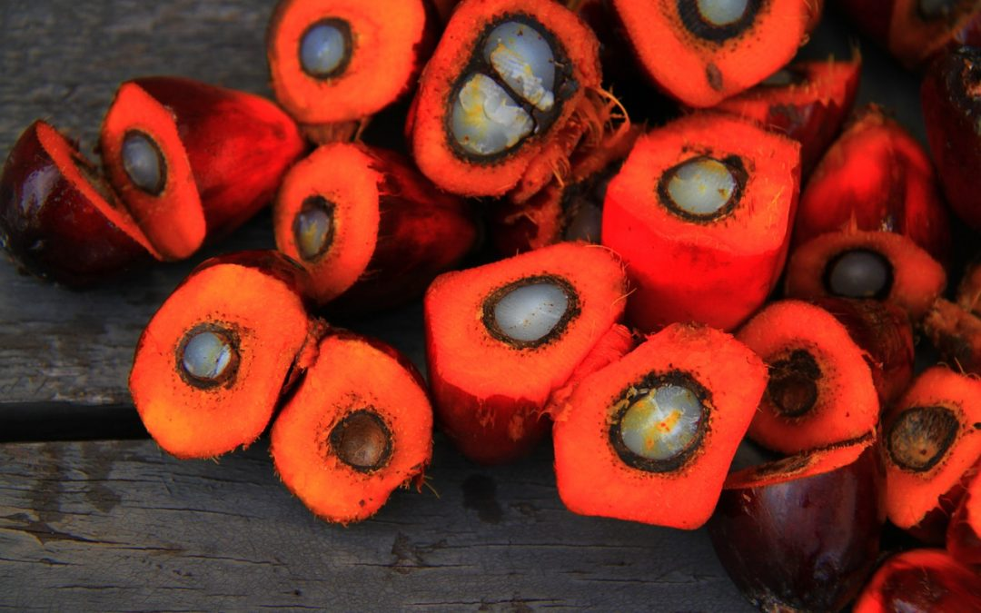 What is Responsibly-Sourced Palm Oil?