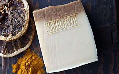 10 Reasons Why You Need Castile Soap in Your Home